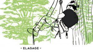 TRAVAUX D'ELAGAGE